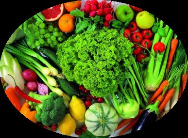 zelenina-vyšší-elipsa